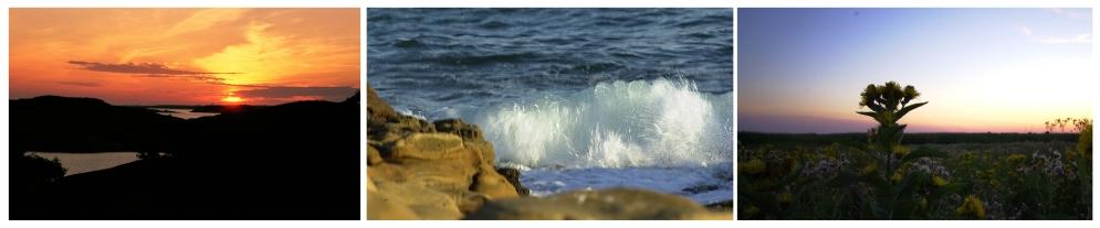 Meri sarja