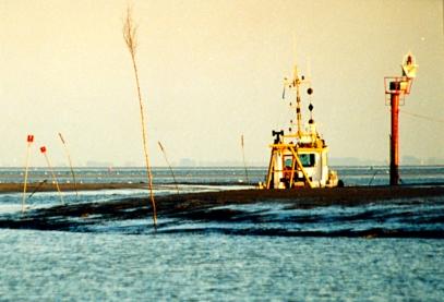 Aurasbåtski hommissa