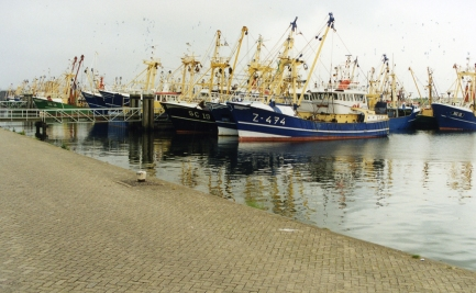 Sy Naneux homeport_Lauersoog
