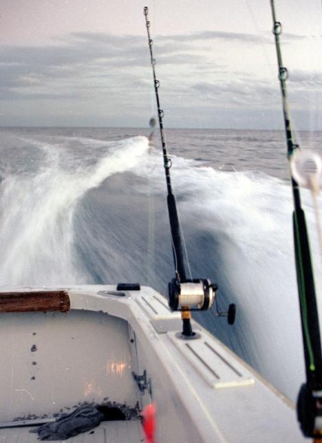 "Blue Marlin ""Power fishing"""