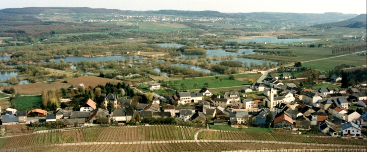 Luxenburgin viinirinteitä