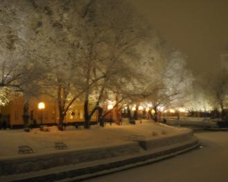 Aurajoki tammikuu 2010