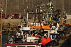 Sagresin kalasataman paatteja