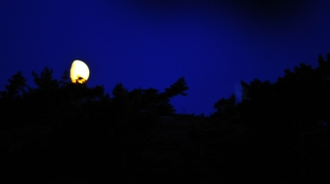 Kuu juhannus 2012