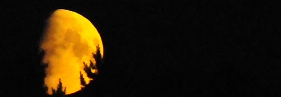Kuu-ukko Decreasing palkki