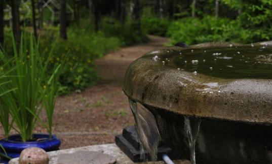 Puistotie ja suihkulähde.2