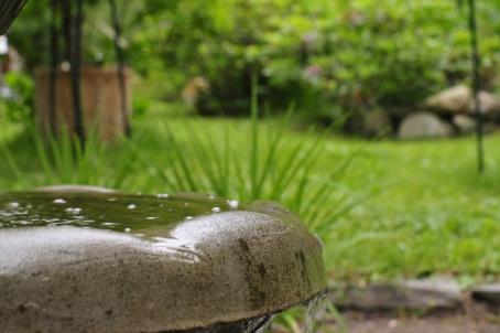 Vesi solisee