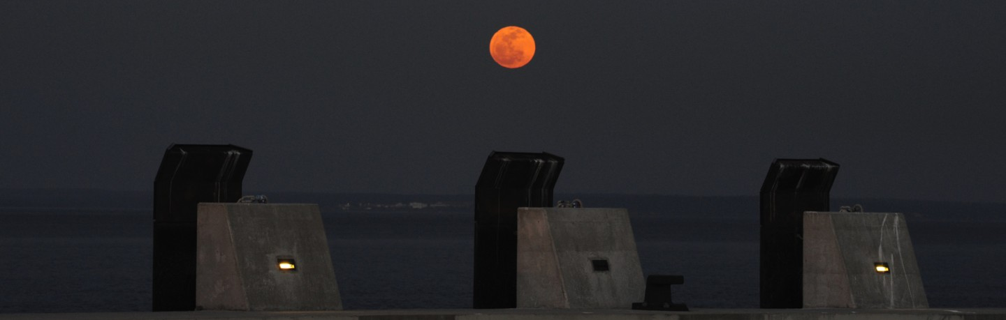 cropped-tejo-full-moon2.jpg