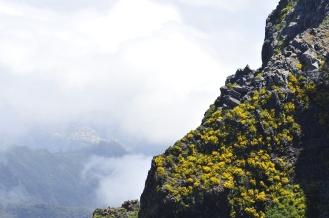 Funchal Pico Arreeiro