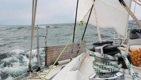 Naneux at Markemeer