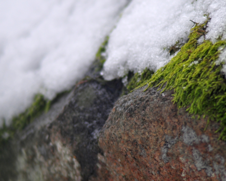 ice-and-stone-1280-x-1024