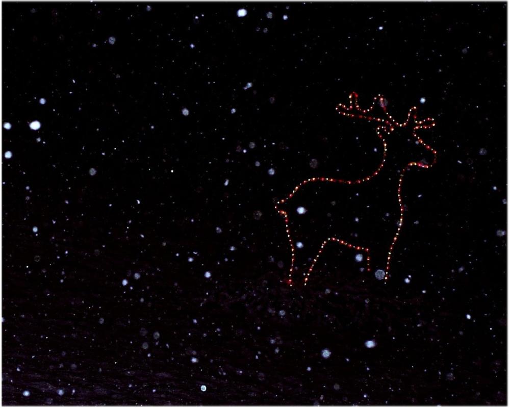 tyopoyta-joulu-1280x1024