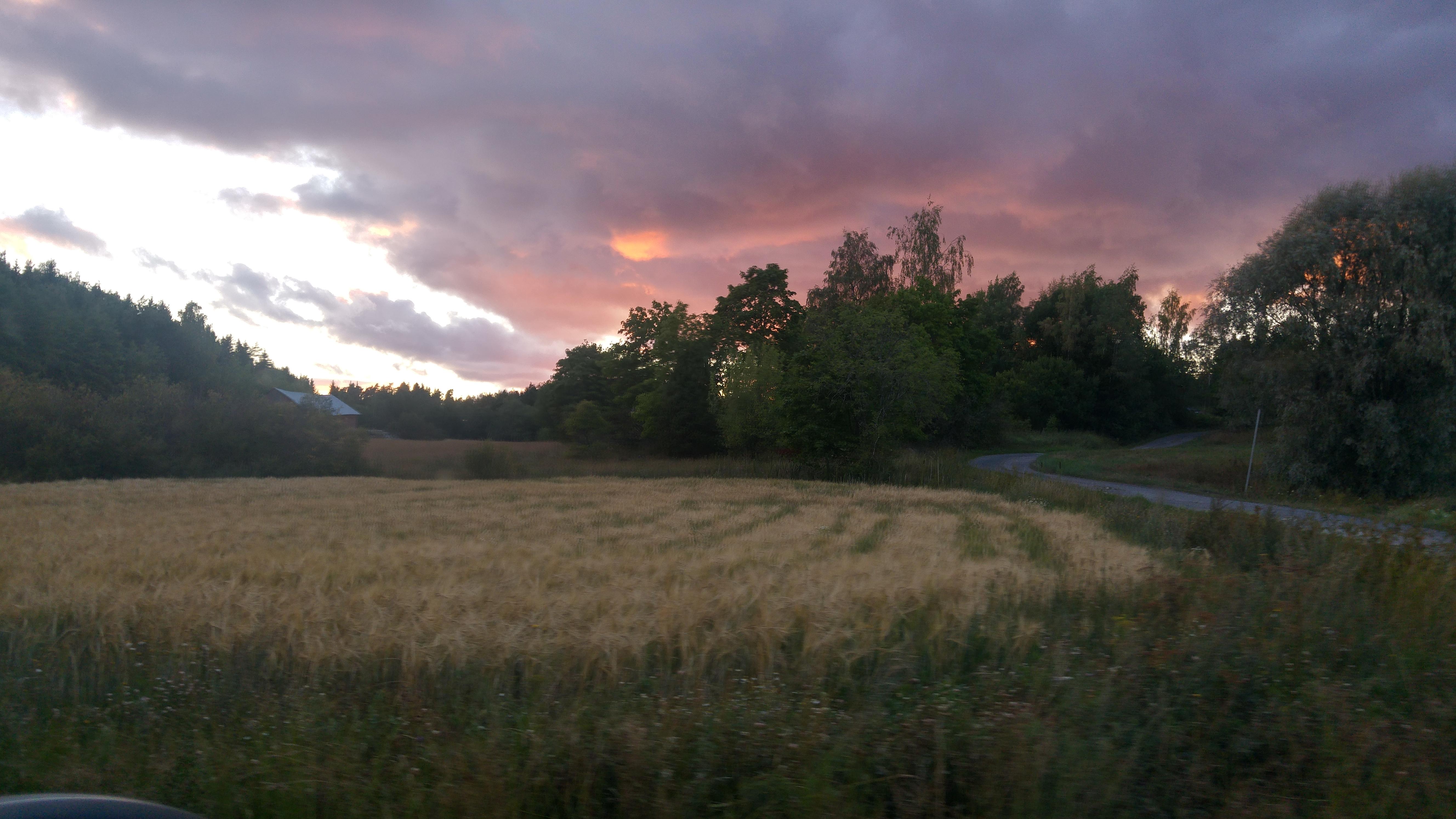 Stormälö fields